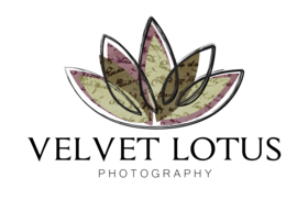 Velvetlotus flower revised